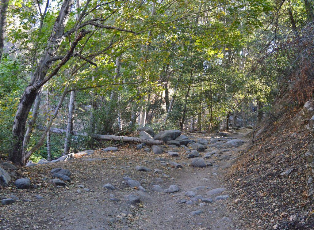 Switzer-falls-hike-1024x751