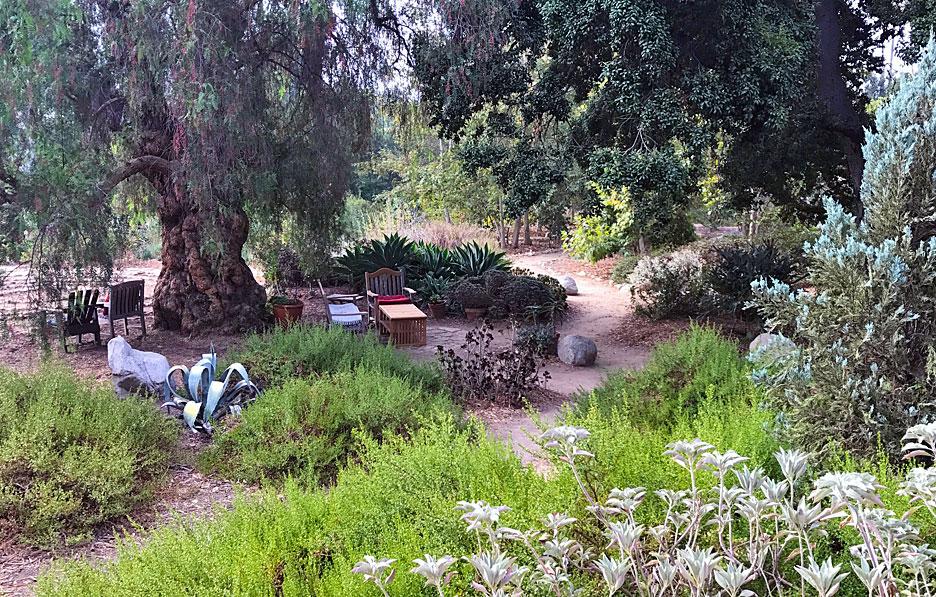 arlington-garden-view