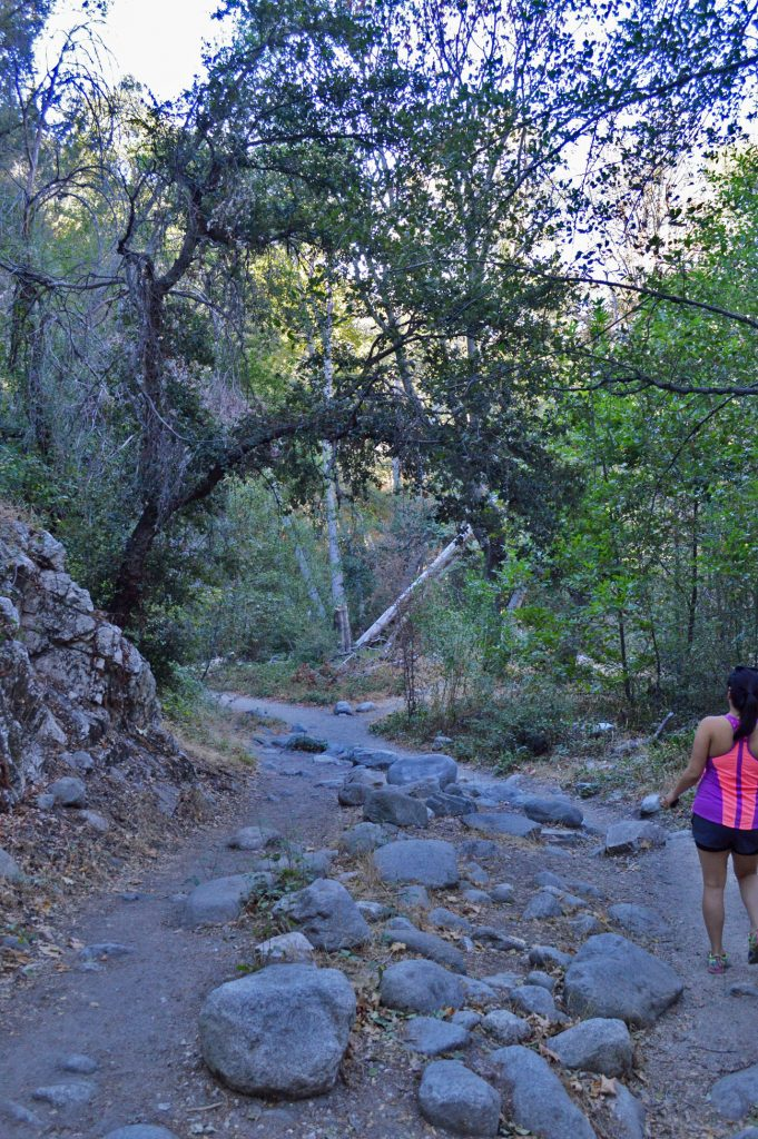 brian-holt-hiking-681x1024