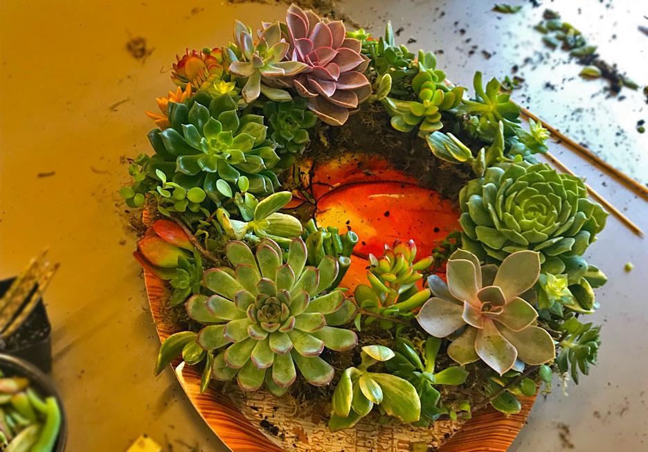 complete-succulent-wreath