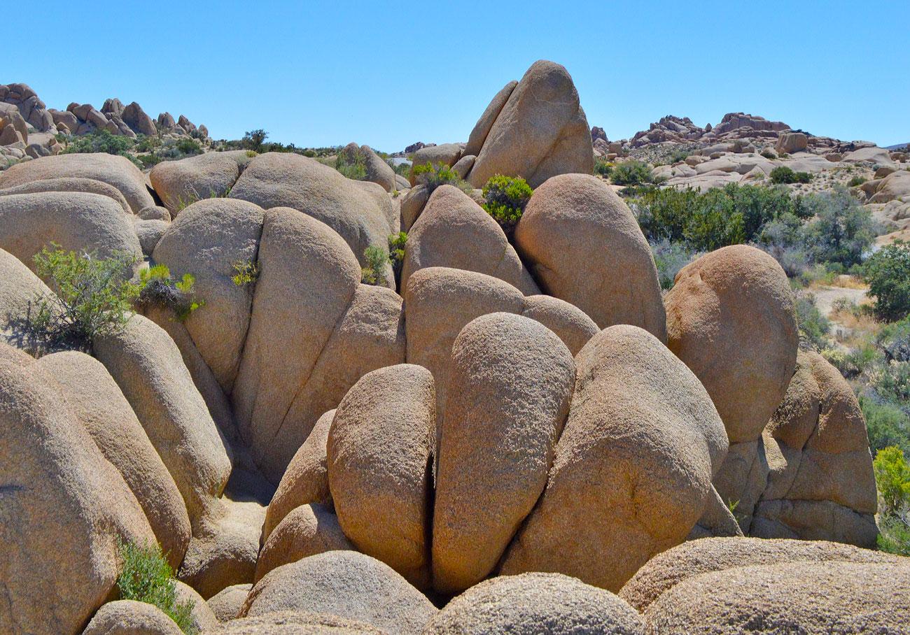 joshua-tree-park-rocks