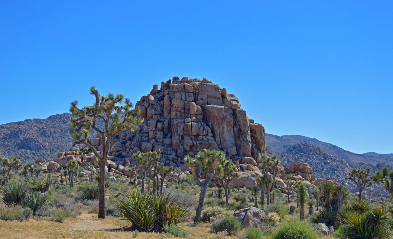 joshua-tree-rocks