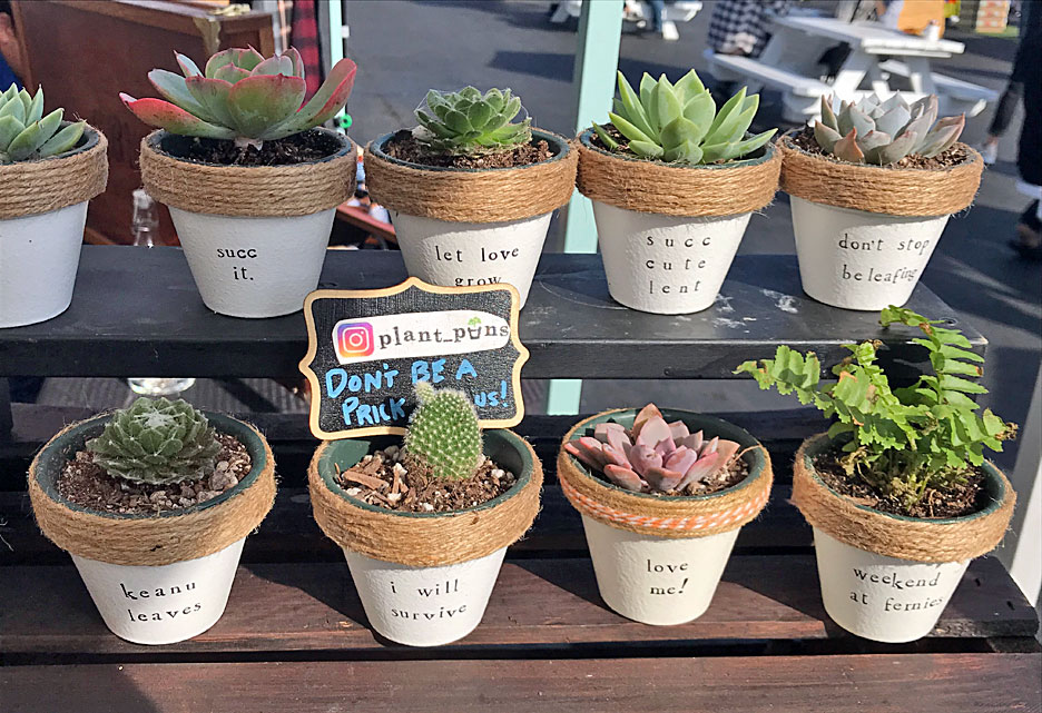 plant-puns