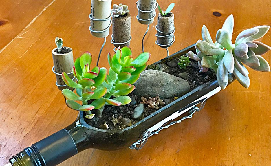 succulent-wine-bottle-craft
