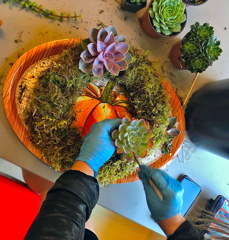 succulent-wreath-building