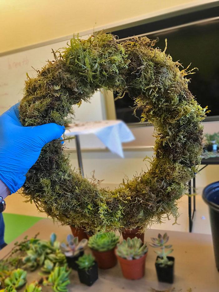 succulent-wreath-guide