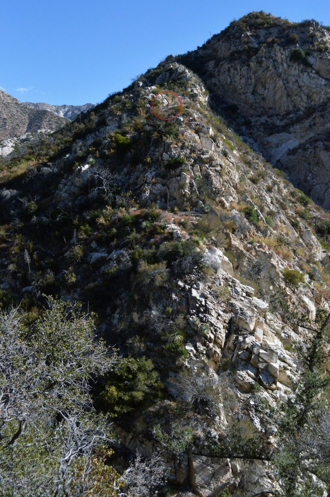 switzer-falls-hiking-681x1024